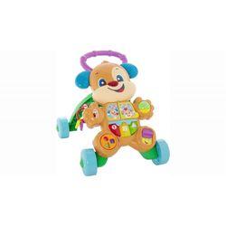 Fisher-Price---Aprender-e-Brincar-Cachorrinho-Que-Anda---FRC78---Mattel